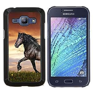 TECHCASE---Cubierta de la caja de protección para la piel dura ** Samsung Galaxy J1 J100 ** --Hermoso Caballo Negro