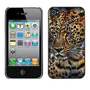 Super Stella Slim PC Hard Case Cover Skin Armor Shell Protection // M00145923 Cat Rauptier Zoo Wild // Apple iPhone 4 4S 4G