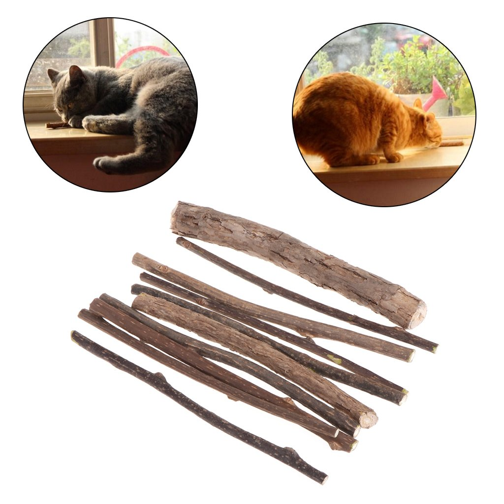 ECMQS 10 Unidades Gato Juguete Limpieza Dientes Pura Naturales Gato Menta Snacks Mascotas Gato molaren Pasta de Dientes Stick Naturales Juguete para Gatos: ...