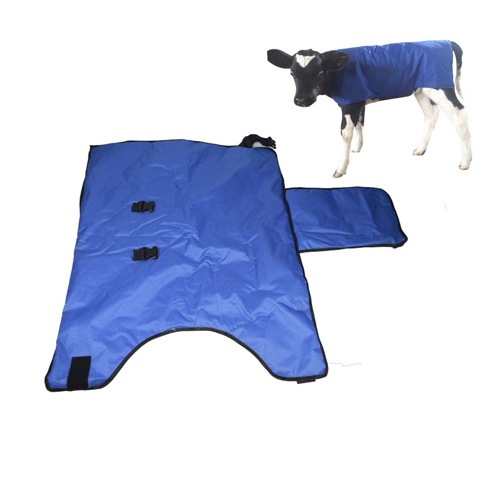Calf Blanket Calves Coat Waterproof Livestock Protector Neck to Tail Sunny farm