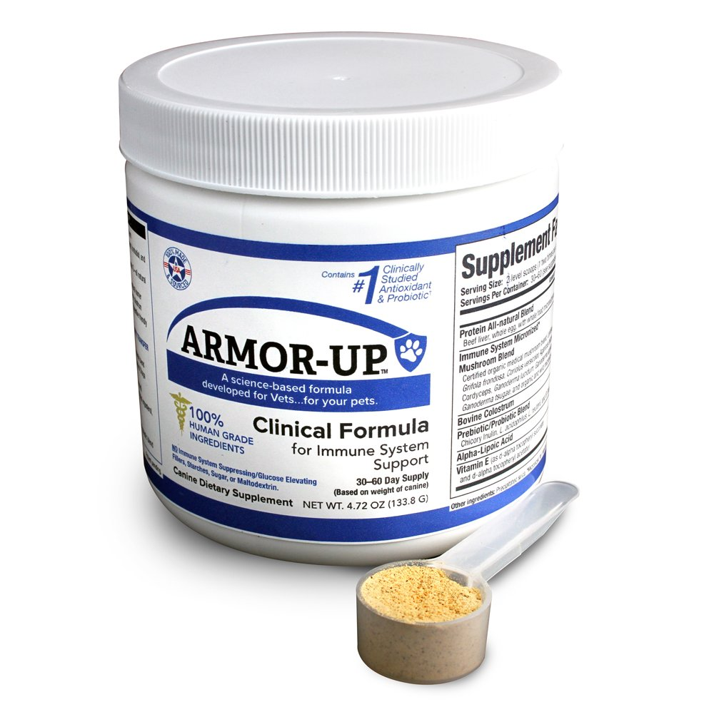 K9 Medicinals - Armor UP - K9 Immunity Blend - Medicinal Mushroom Supplement for Dogs with Cancer Immune Support for Dogs - 4 Ounces