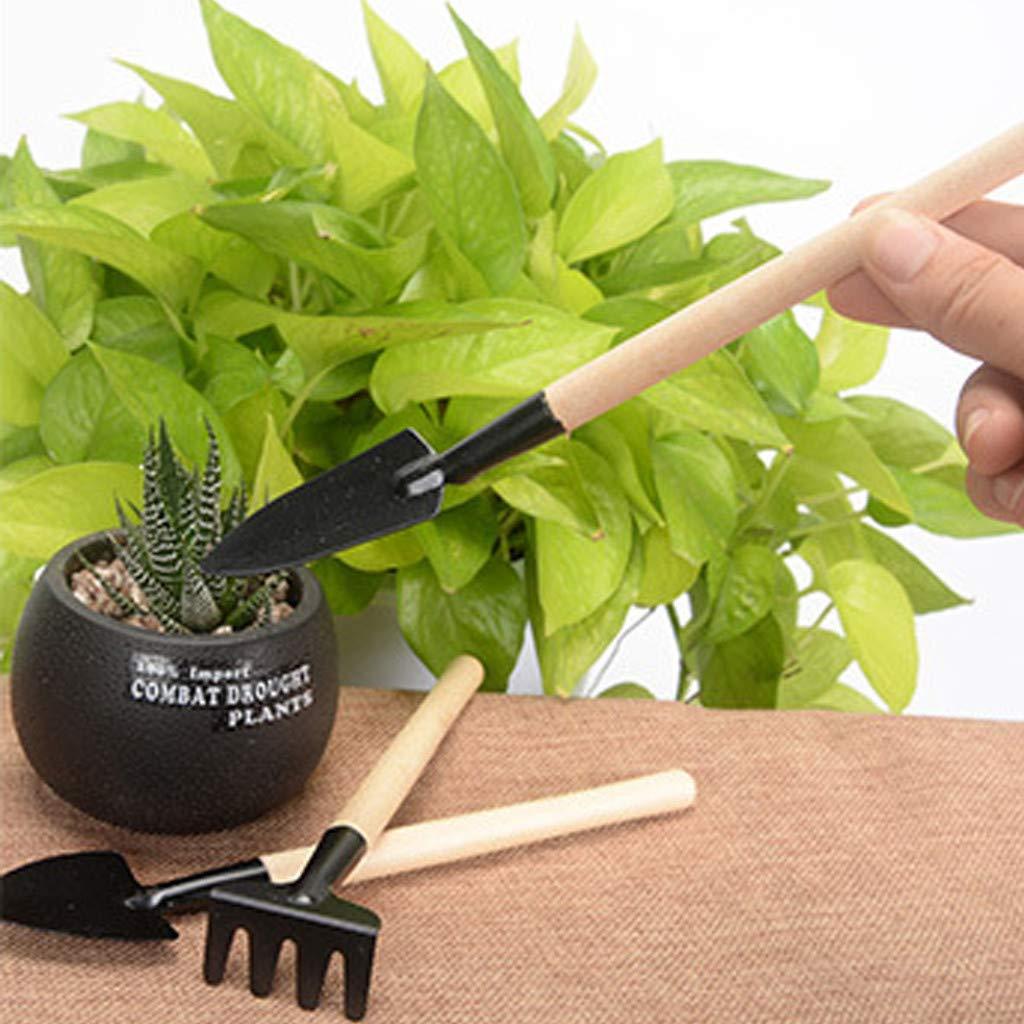 CUEYU 11 pi/èces Mini Outils de Jardinage Outils de greffes succulentes Int/érieur Miniature F/ée Jardin Soins des Plantes 11