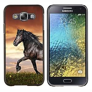 EJOOY---Cubierta de la caja de protección para la piel dura ** Samsung Galaxy E5 E500 ** --Hermoso Caballo Negro