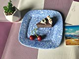 Melamine Plates Set - Hware 10''Inch Everyday Use Dinner Plates, 4pcs, Blue