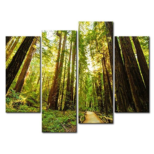 So Crazy Art - Canvas Print Wall Art Painting For Home Decor,Fenced Road Through The Redwood Trees Sunrise Grass 4 Pieces Panel Paintings Modern Giclee Stretched And Framed Artwork Oil The Picture For Living Room Decoration,Landscape Pictures Photo Prints On Canvas
