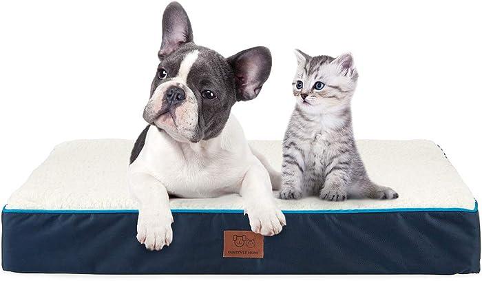 Top 10 Water Proof Pet Home