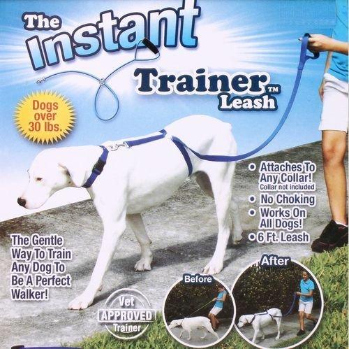 Gentle Leader Dog Trainer - 7