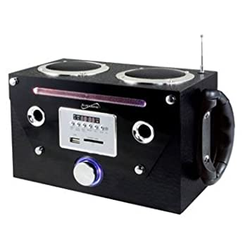 Amazon.com: Supersonic SC-1322 - Altavoz portátil con ...