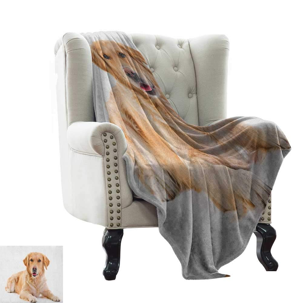 color13 60\ color13 60\ BelleAckerman Swaddle Blanket golden Retriever,Young Pedigree Puppy Laying Over White Background Sweet Baby Dog, Sand Brown White Lightweight Microfiber,All Season for Couch or Bed 60 x78