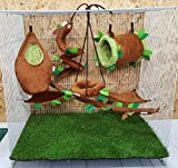 Brown Sugar Pet Store 7 piece Sugar Glider Cage Set Forest Pattern Light Brown Color