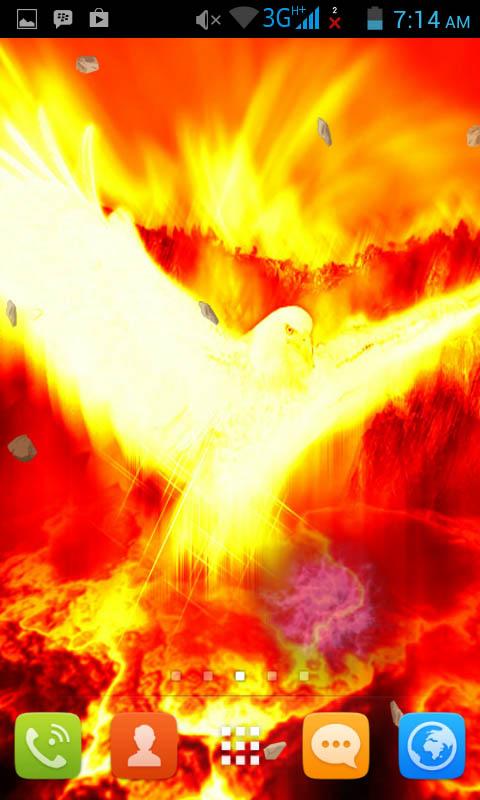 Live Phoenix