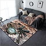 Vanfan Design Home Decorative 312264620 Classic Grunge Pocket Watch Clock Skeleton Keys On Ancient World Map Modern Non-Slip Doormats Carpet for Living Dining Room Bedroom Hallway Office Easy Clean F
