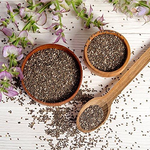 Las semillas de chía, MeaVita premium paquete 2er (2 x 1000 g): Amazon.es: Alimentación y bebidas