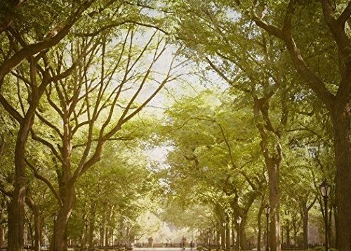 Central Park Sunday - new York city photography, central park, nyc décor, central park photo, - Manhattan Mall Nyc