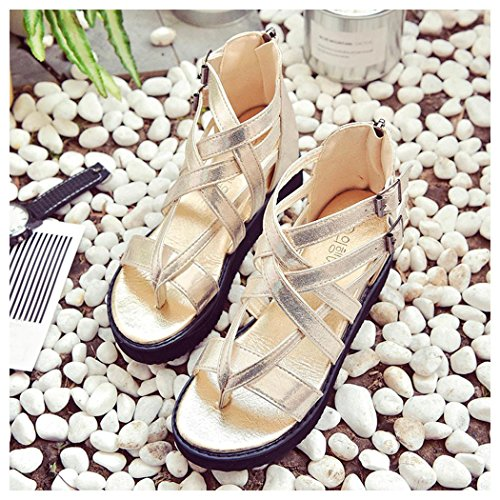 Summer Sandals, Inkach Women Summer Sandals Shoes Peep-toe Low Roman Shoes Ladies Flip Flops Gold
