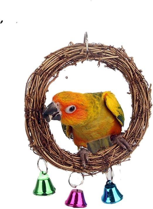 MJBABY Soporte para Loros Soporte para Columpios de Juguete Accesorios para jaulas de pájaros Suministros para pájaros Escalera de Mano Escalera de Tiro de Loro Claro-UNA: Amazon.es: Productos para mascotas