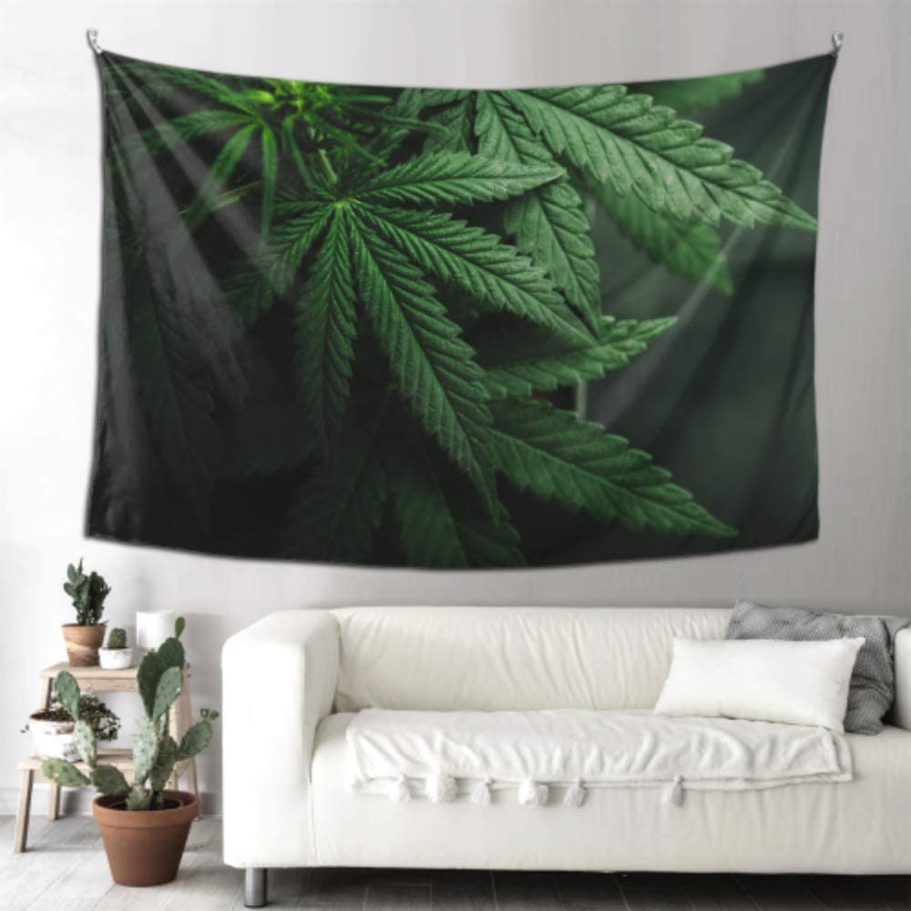 Decoración de pared de arte de oficina Hojas de marihuana Cannabis On Dark Farmhouse Decoración de pared de baño Tapiz de pared para hombres 90x60 pulgadas (229x152cm) Arte de colgar en la pared Hog