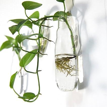 Moilyn creativo jarrón de vidrio de pared Europea pecera montada en la pared agua suspendida cultura