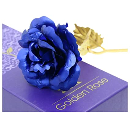 Amazon sweetly carnation mothers day gift 24k gold plated sweetly carnation mothers day gift 24k gold plated decoration golden flowers pretty rose for birthday mightylinksfo