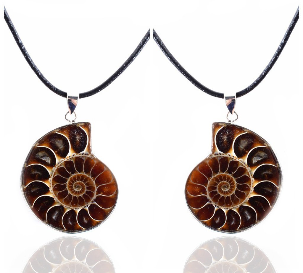 Amandastone 35-40mm Natural Two Matching Ammonite Fossil Stone Gemstone Charms Pendant Necklaces Vintage style