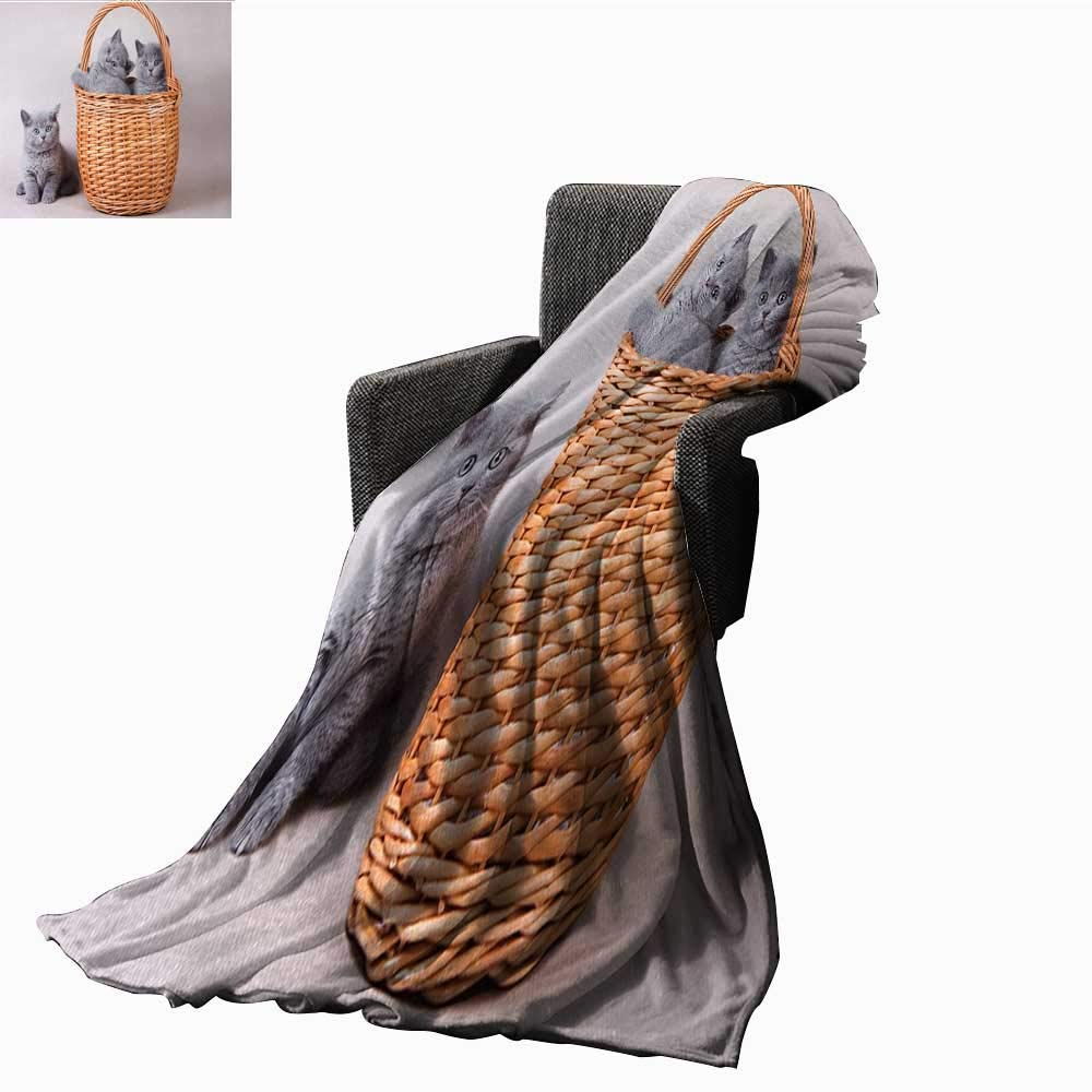 color14 L 60 x W 36 Tapesly Kitten Weave Pattern Extra Long Blanket Little Bengal Cats in Basket Cuddly Purebred Kitties Domestic Feline,Super Soft and Comfortable,Suitable for Sofas,Chairs,beds