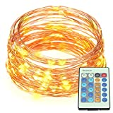 Docooler 66ft IP65 Waterproof LED String Lights Outdoor Copper String Wire Lights Dimmable LED String Lights Water-resistant Firefly String Lights Warm White with Power Adapter Remote Control