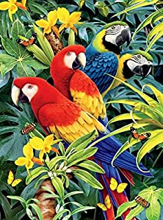 product image for Ceaco Wild - Majestic Macaws 1000 Piece Puzzle