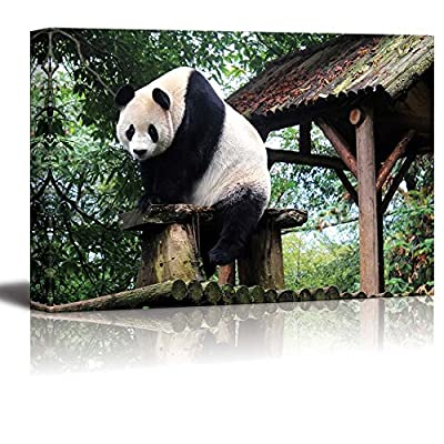 Canvas Prints Wall Art - Cute Animal Giant Panda | Modern Wall Decor/Home Art Stretched Gallery Canvas Wraps Giclee Print & Ready to Hang - 24