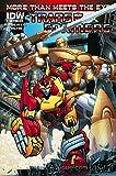 Transformers, The: More Than Meets the Eye (2nd Series) #17B VF/NM ; IDW comic book
