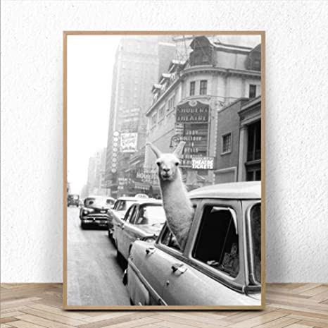 Poster Affiche Lama a Time Square Swag New York Annees 30 Photo Vintage