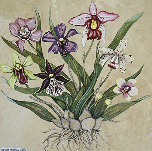 (Vibrant Orchids)
