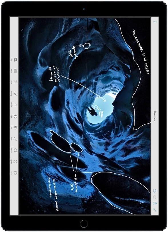 Apple iPad Pro 12.9in Tablet (256GB Wi-FI, Space Gray)(Renewed)