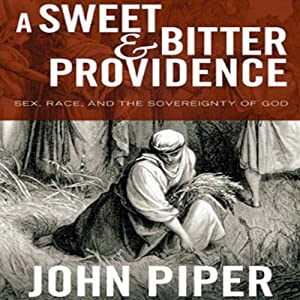 A Sweet & Bitter Providence Audiobook