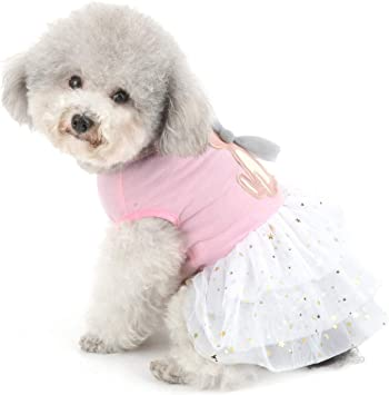 Handfly Pet Autumn Winter Warm Clothes Cute Small Rabbit Princess Dress For Small Dogs Puppy Fashion Skirt