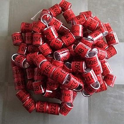 100 Stück Taube Fuß Ring 2019 Wort Ohrringe Qualität langlebig Vogel Ring Fasan Fuß Ring Durchmesser 8mm Vogel Werkzeuge Groß