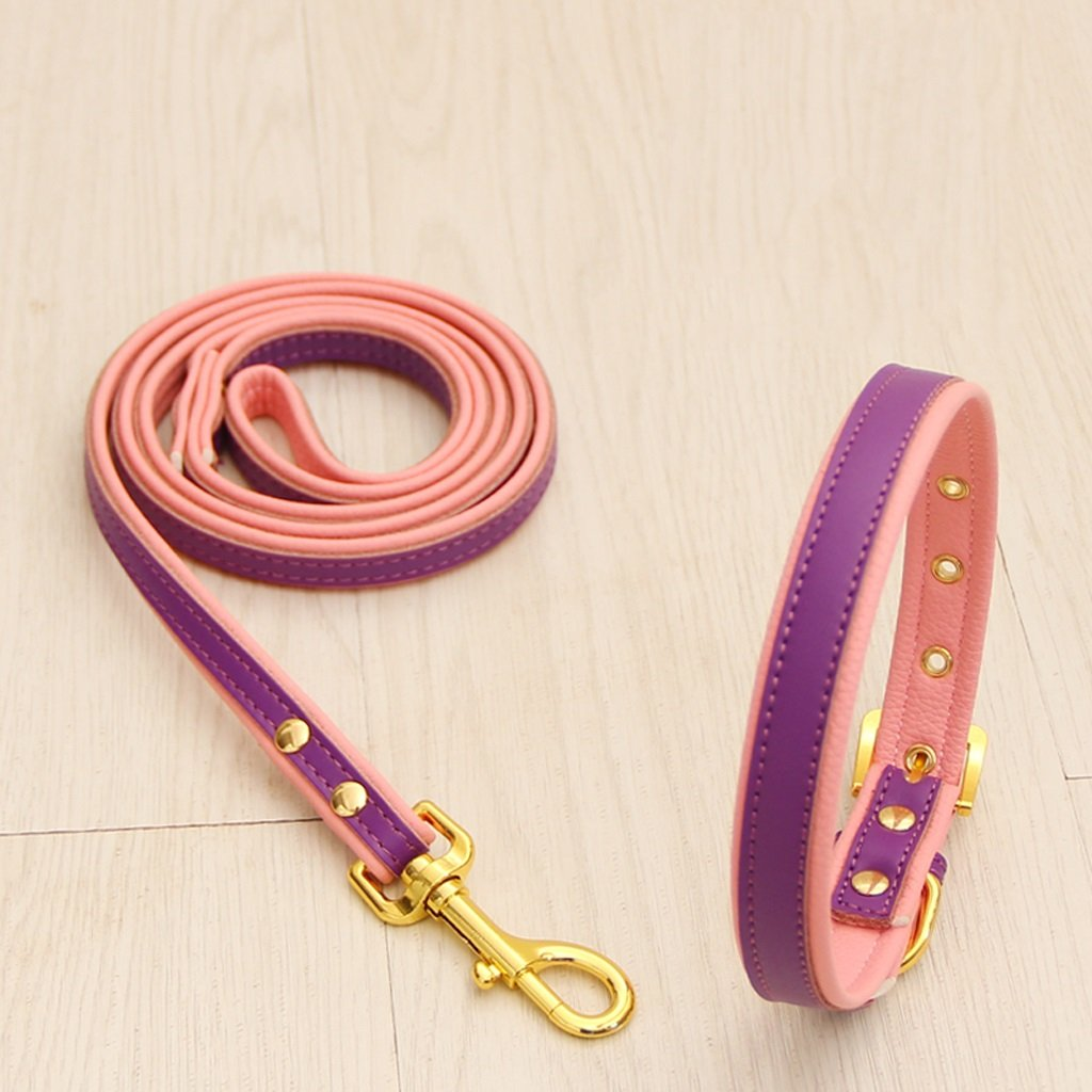 Purple XS Purple XS GWM Leashes Pet Harness, Leash, Dog Chain, Small Dog, Hyena Rope, Dog Collar, Pet Supplies (color   Purple, Size   XS)