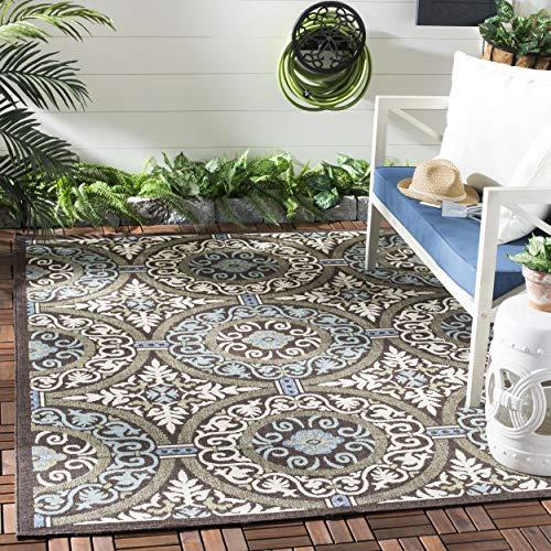 Safavieh Veranda Collection VER055-0621 Indoor/ Outdoor Chocolate and Cream Contemporary Area Rug (6