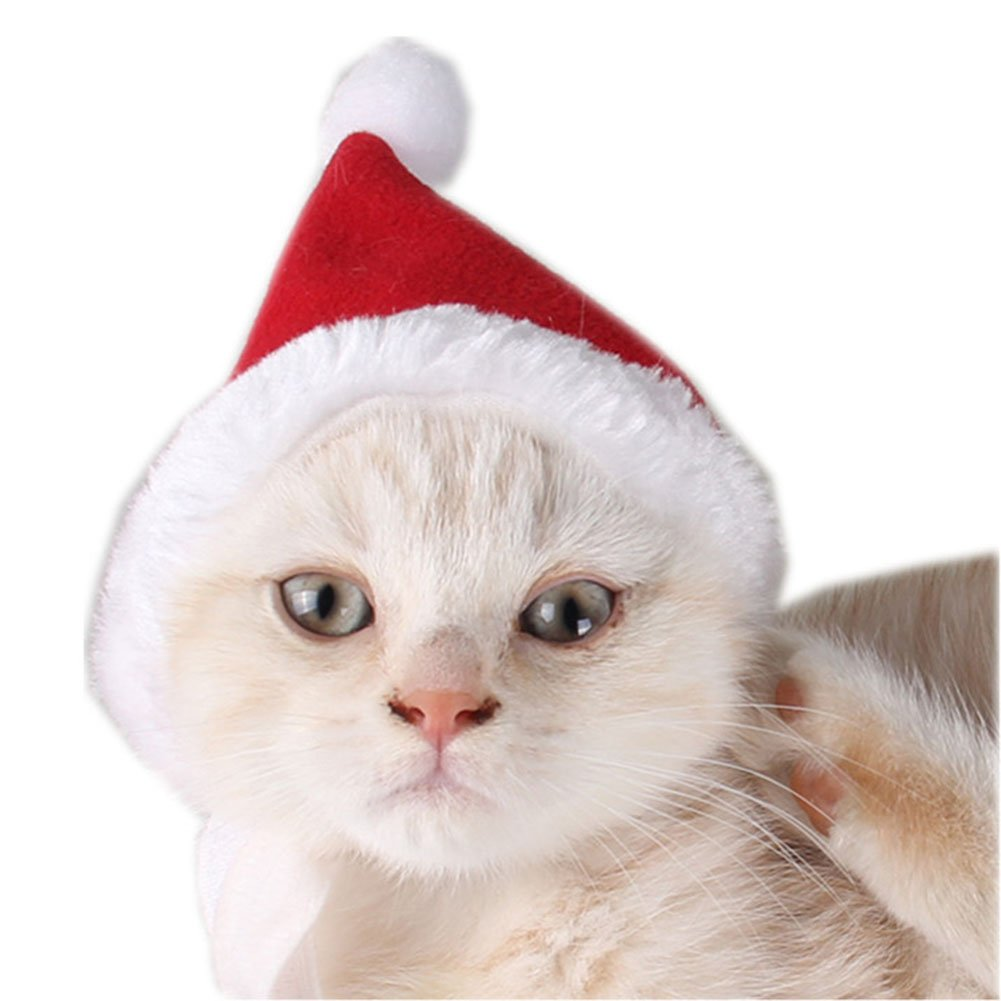 Skisneostype Haustier Weihnachtskostüm Weihnachten Hund Katze Hut ...