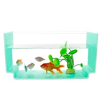 NewCrea acuario de acrílico para el hogar, oficina, escritorio, azul, rectangular: Amazon.es: Productos para mascotas