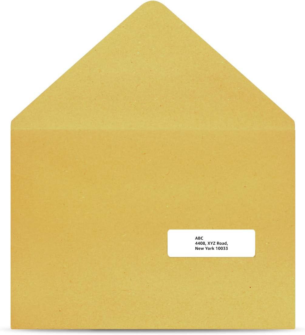 AmazonBasics Address Labels for Laser & Inkjet Printers, 1