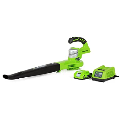 Greenworks 24V 90/130 MPH Dual Speed Cordless Blower, 2.0 AH Battery Included 24352