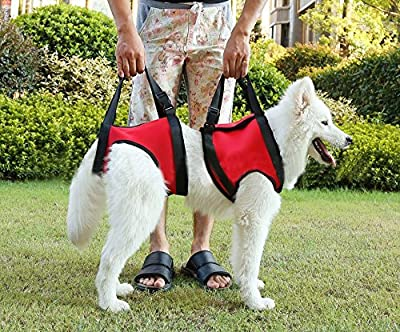 Lifeunion Dog Foreleg and Hind Rear Legs Sling Dog Lift Support Rehabilitation Harness for Elderly, Injured, Disable Pets, Help Stand Up, Up/Down Stairs, Get into Car