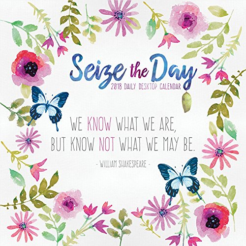 (2018 Seize the Day Daily Desktop Calendar)