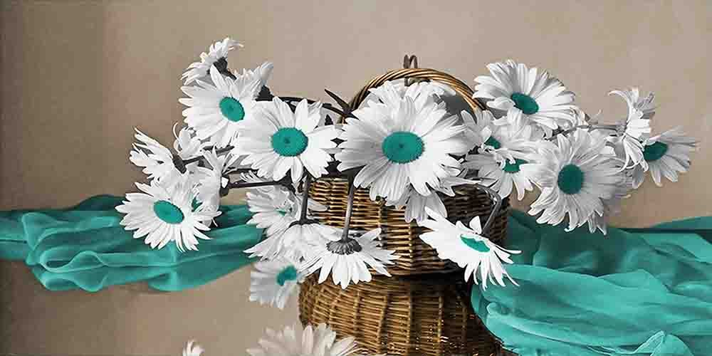 Daisy Basket - Brown Background with 9 Decor Colors - Flowers, Floral, Home Decor. Wall Art Canvas wrapped around a wooden frame, Family Room, Living Room. Bedroom ) (Aqua, 20x40)