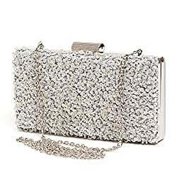 Sequin Beaded Clutch