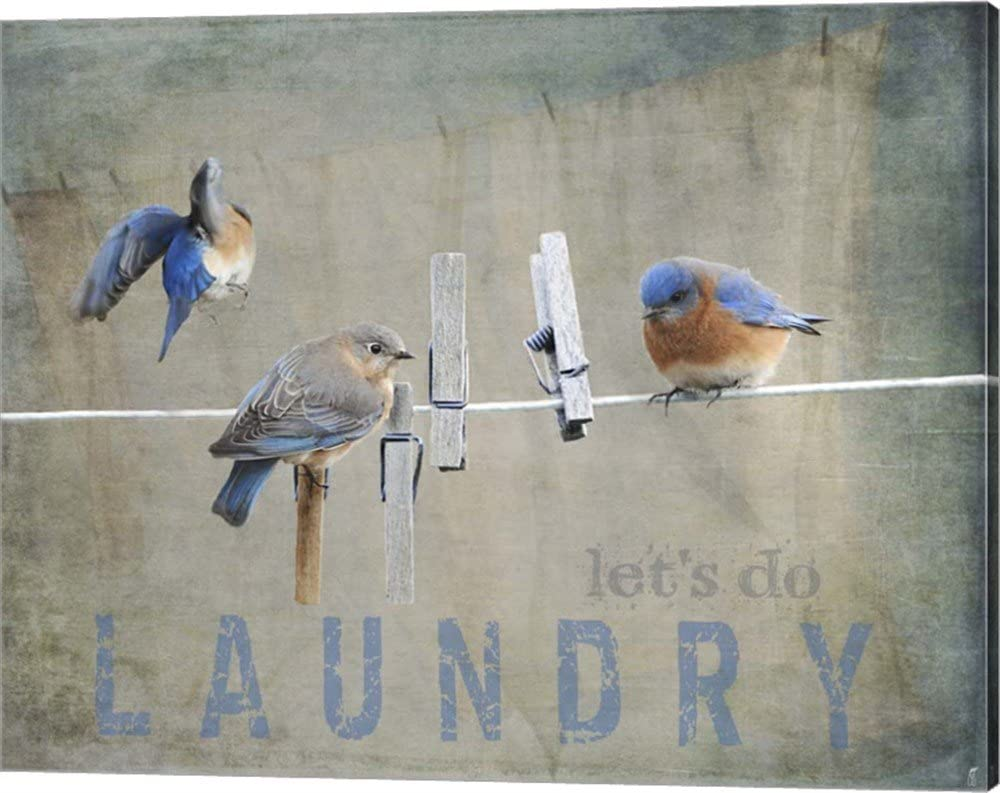 Laundry Day Bluebirds by Jai Johnson Canvas Art Wall Picture, Gallery Wrap, 20 x 16 inches