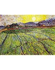 FPRW® Palapelit, Vincent Van Gogh Aikuisten maalauksen auringonnousu puinen palapeli, baari kahvila pubihuoneen sisustuskangasmaalaus - 1000 kappaletta