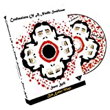 Murphy's Magic Confessions of a Needle Swallower by Steve Spill DVD