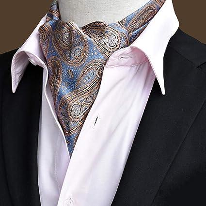 IPOTCH Pañuelo de Cuello Corbata de Camisa Vintage Ascot Cravat ...