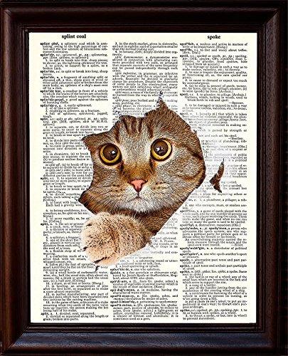Kitty Cat Art - 5